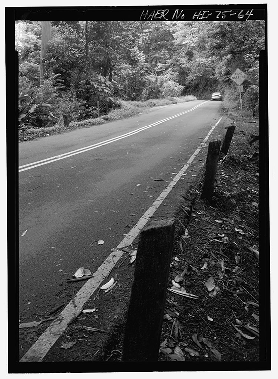 Concrete road markers from original highway construction, near MM 7 - Hana Belt Road, Between Haiku and Kaipahulu, Hana, Maui County, HI