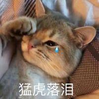 Buy bitcoin from Jixiangyou1112 with Alipay