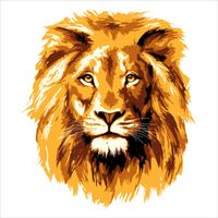 Buy bitcoin from LionsgoROAR with Chime instant transfers