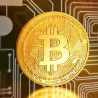 Buy Bitcoin from HonestLuckily309 with Check
