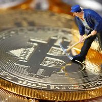 Buy Bitcoin from AbleMonkfish900 with Myer Gift Card