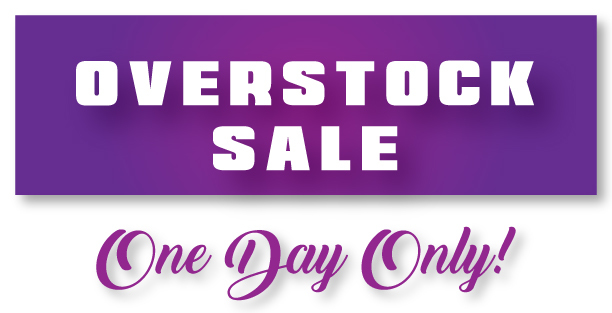 One Day Overstock Sale
