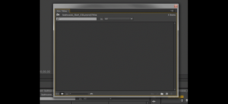 Organizing Your Premiere Pro Project: Floating Window