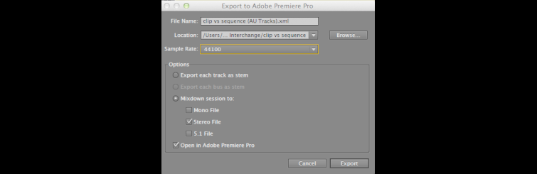 Export to Premiere Pro