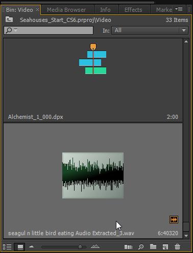 ExtractedAudio