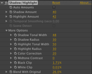 Shadow Highlight Controls