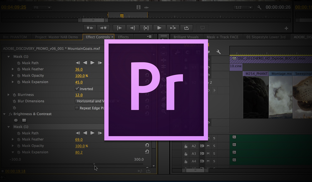 How to Chroma Key in Adobe Premiere Pro