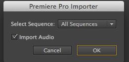 Premiere Pro Importer Dialog Box