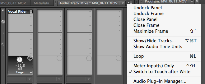 Audio Plug-in Mnager Track Audio Mixer