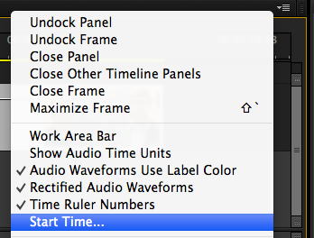 Start Time in Timeline Panel