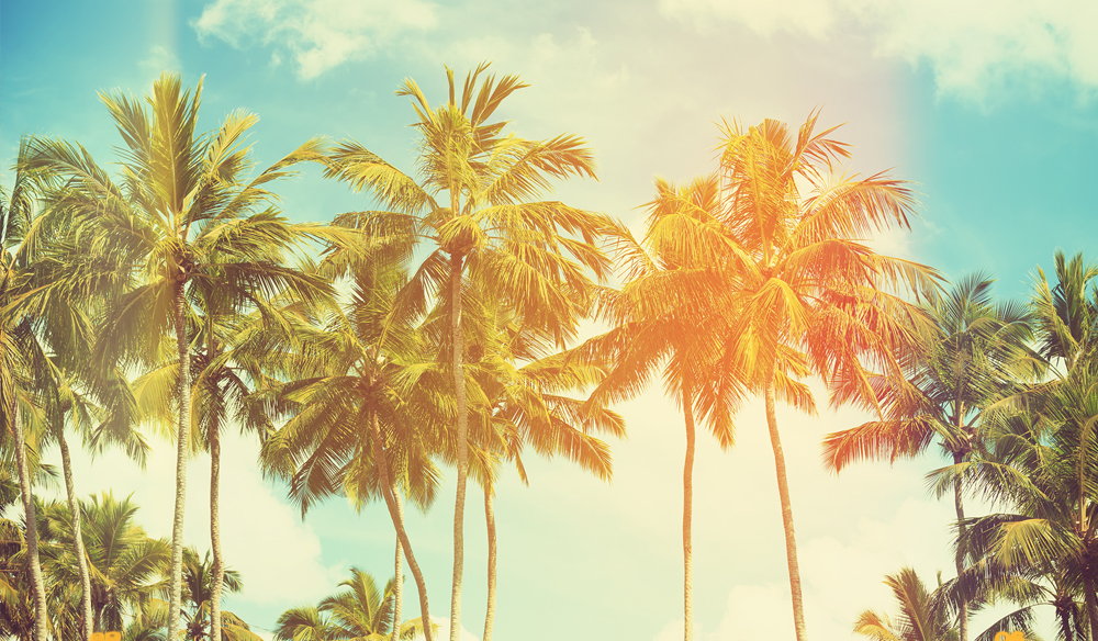 Royalty Free Music Roundup: Tropical & Vacation Tracks