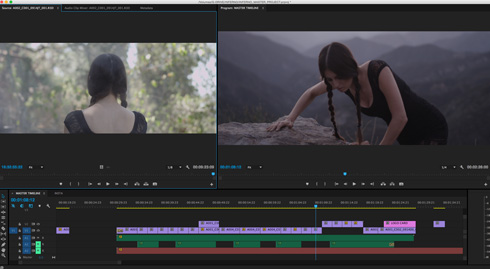 Premiere Pro Media Management