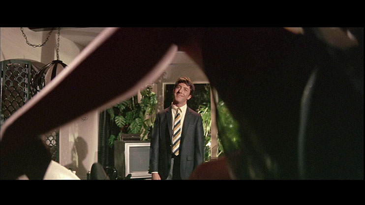 Frame within a Frame: The Graduate