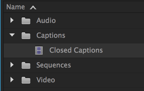 Caption File in Adobe Premiere Pro