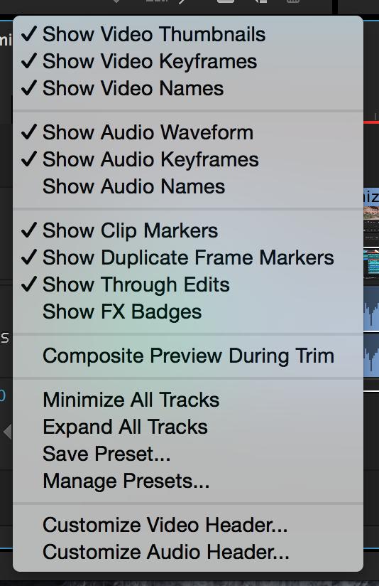 Adobe Premiere Timeline Display Settings