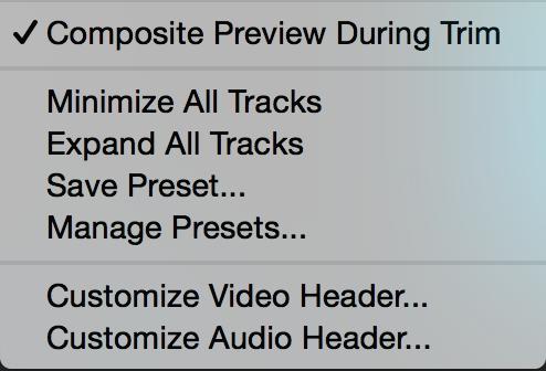 Adobe Premiere Pro Timeline Display Settings