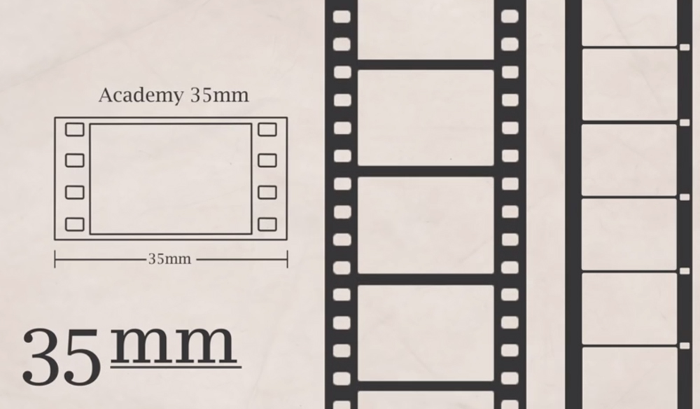 Everything You Never Knew You Wanted to Know About Film