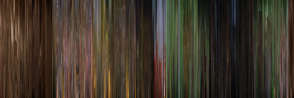 Color Grading Inspiration: Movie Barcodes and Color Palettes: Wizard of Oz