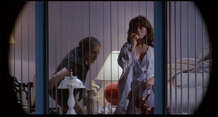 Cinematography Tip: Masks and Vignettes - Body Double