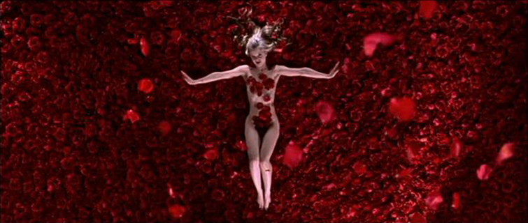extreme_long_shot_conrad_hall_flower_american_beautyHow to Frame a Long Shot Like a Master Cinematographer: American Beauty