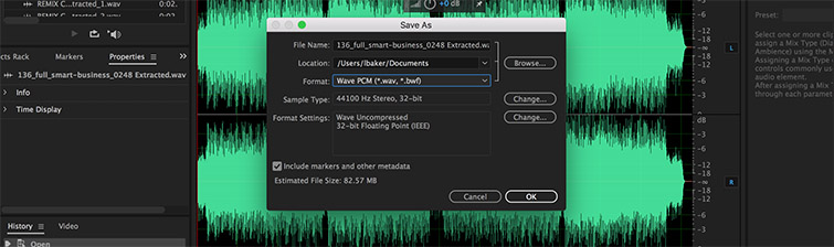 How To Solve Audio Issues in Premiere Pro: Convert to wav