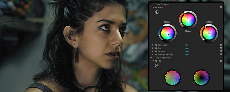 The Best Color Grading Software and Plugins for Video Editors - Colorista