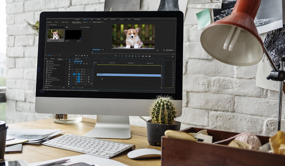 Quick Fix: Video Clip Audio Not Appearing in Premiere Pro Timeline
