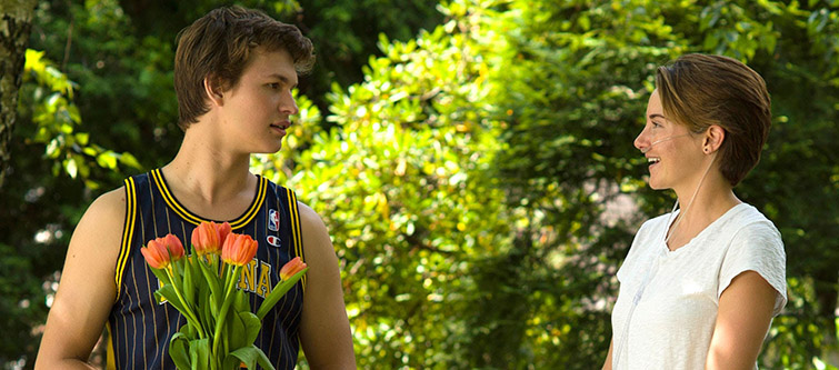 21st Century Films with the Best Return on Investment — The Fault in Our Stars