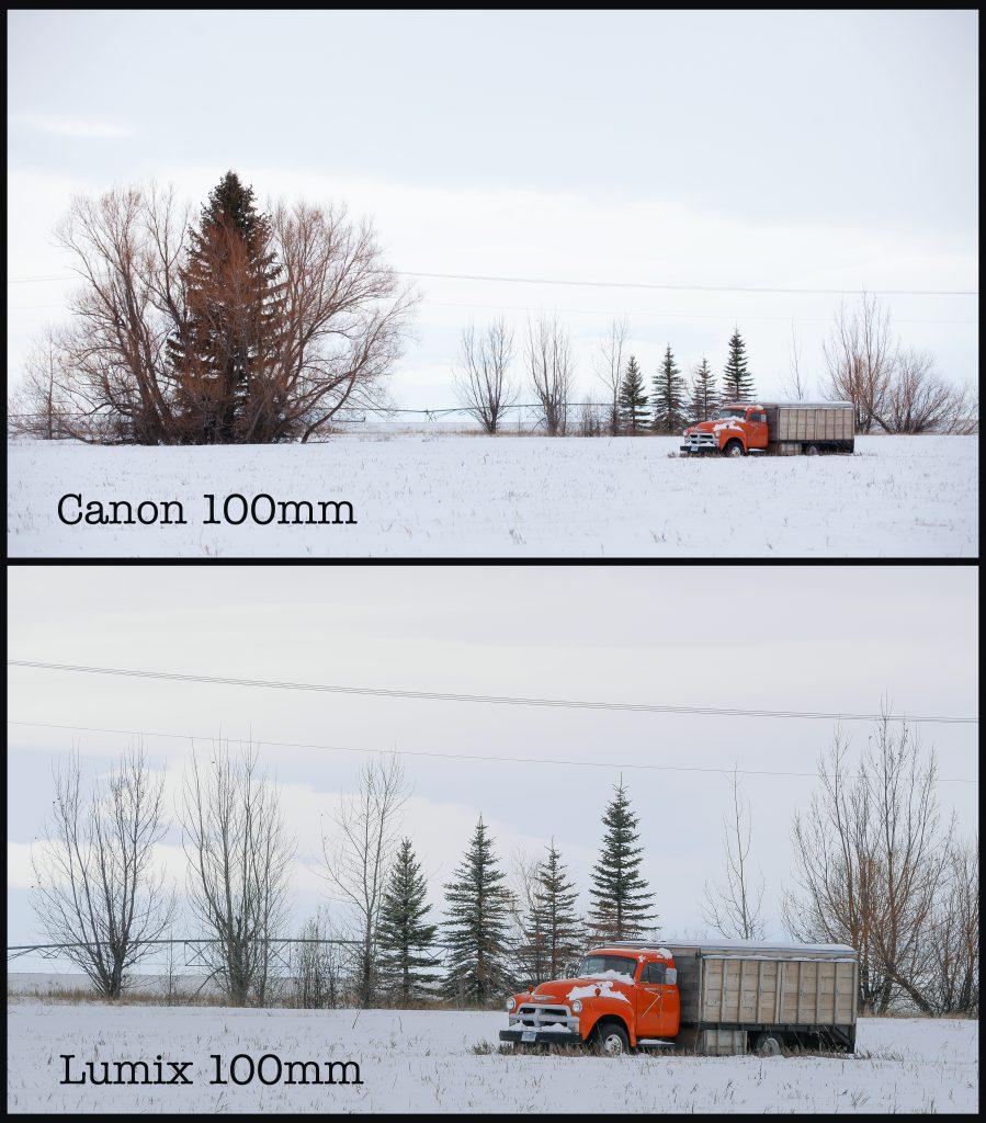 Small Chip, Big Chip: Micro 4/3 vs. Full Frame — 100mm Comparison