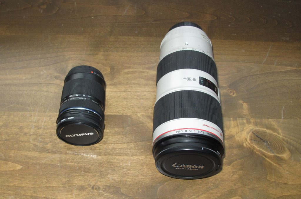 Small Chip, Big Chip: Micro 4/3 vs. Full Frame — Lenses