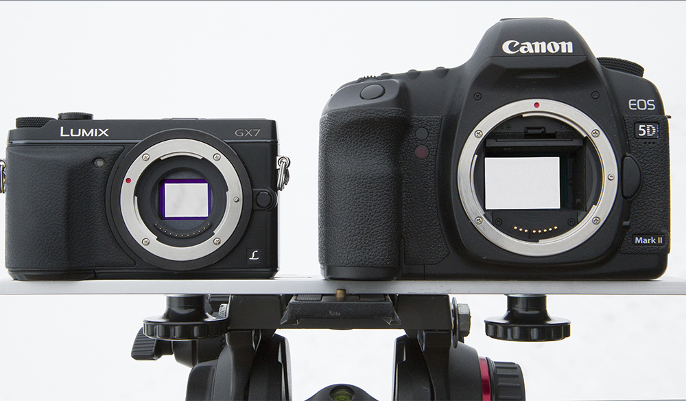 Small Chip, Big Chip: Micro 4/3 vs. Full Frame