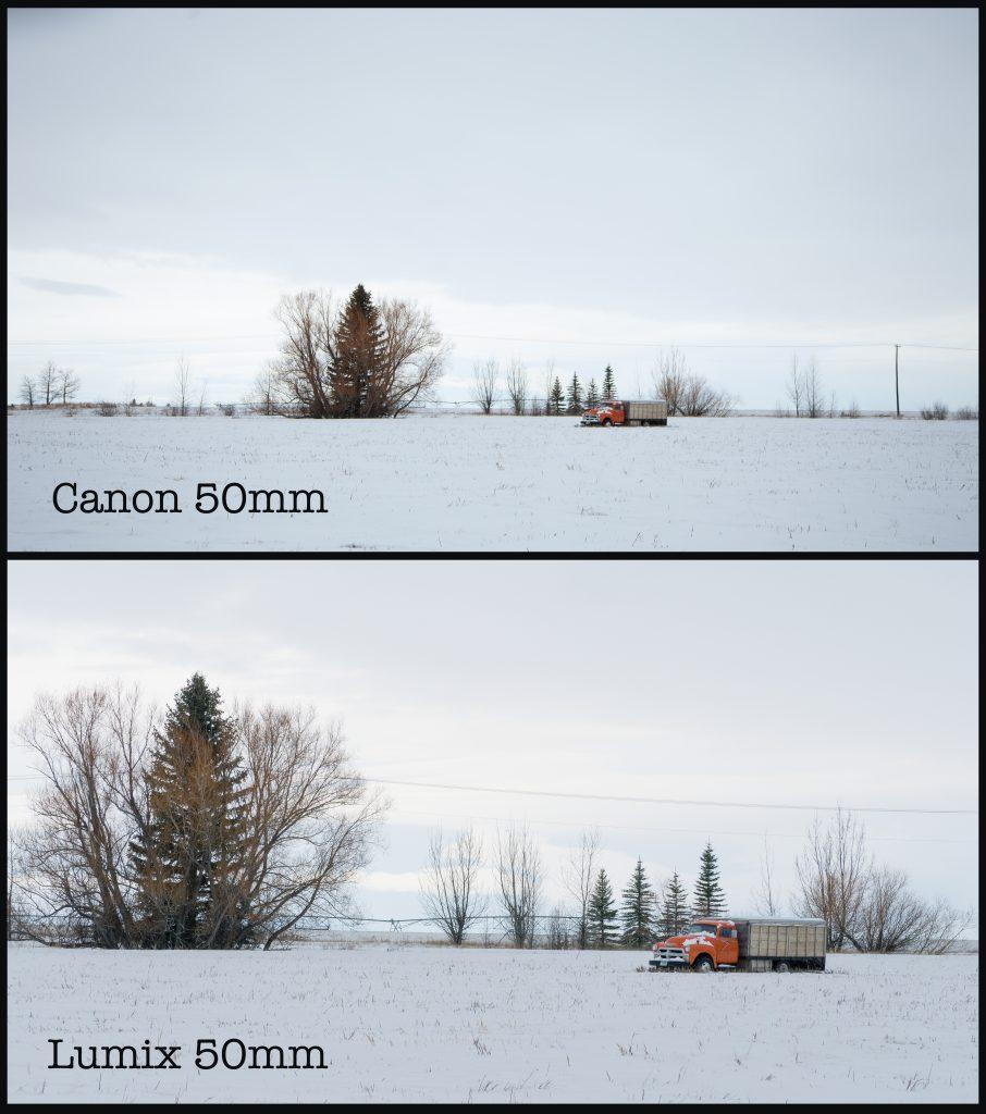 Small Chip, Big Chip: Micro 4/3 vs. Full Frame — 50mm Comparison