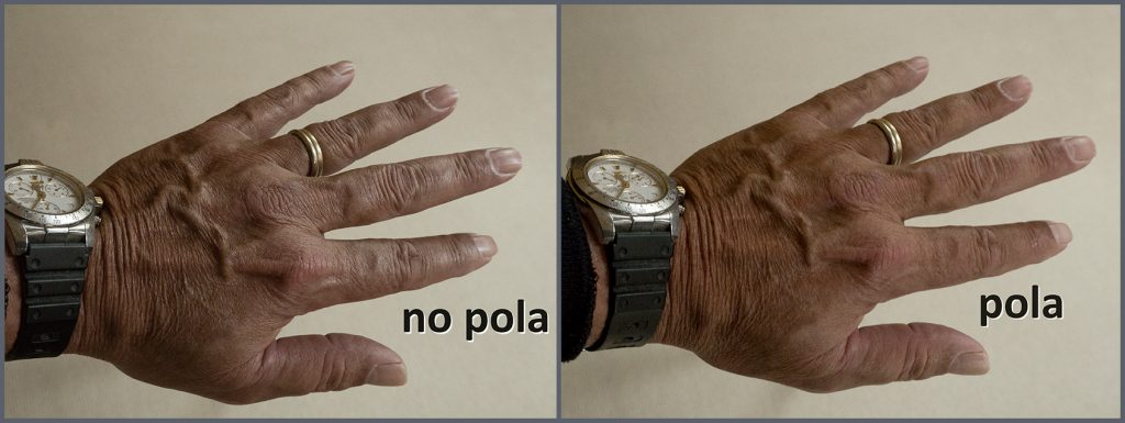 Polarizing Filters Are Essential — Unless They Aren't — Hand Comparison