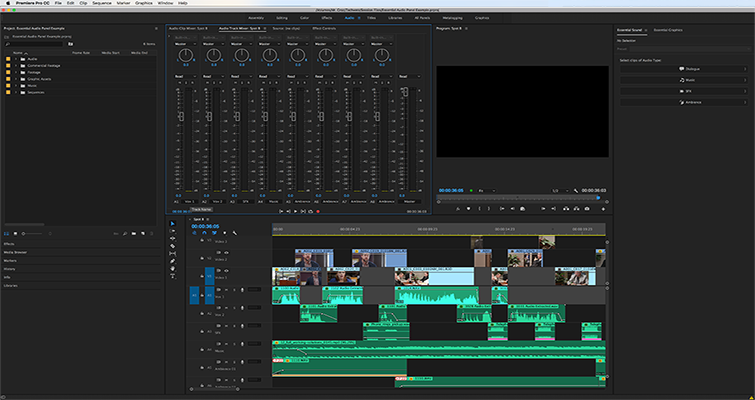 Editing Audio with the Essential Sound Panel in Adobe Premiere Pro — Audio Type
