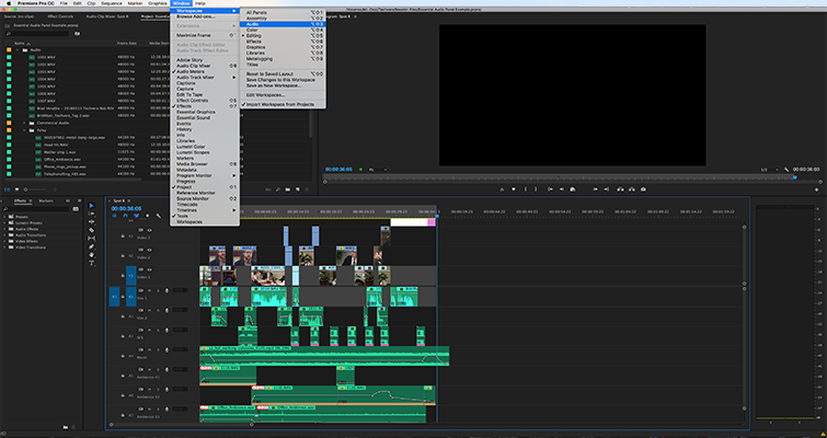 Editing Audio with the Essential Sound Panel in Adobe Premiere Pro — Sound Setting Workspace