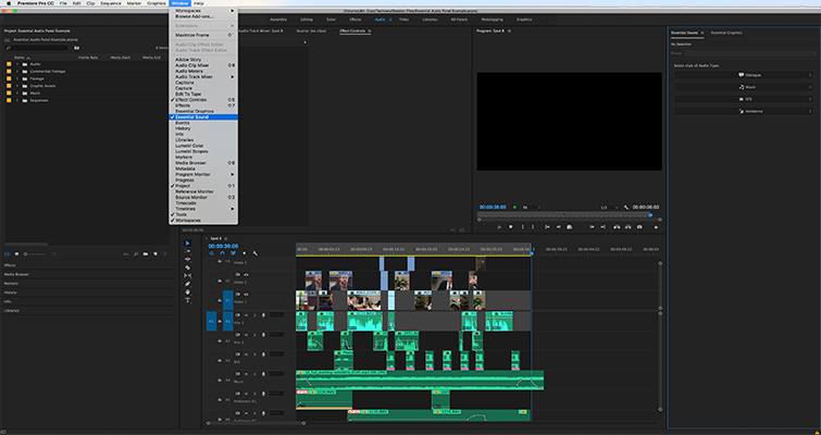 Editing Audio with the Essential Sound Panel in Adobe Premiere Pro — Organize Audio