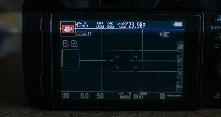 Best Video Settings for the GH5 — LCD Display