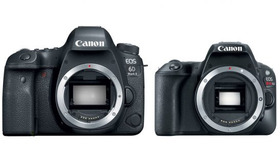Canon Announces the 6D Mark II and Rebel SL2 — Neither Shoots 4K