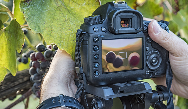 Tips for Photographers Transitioning to Videography — Focus