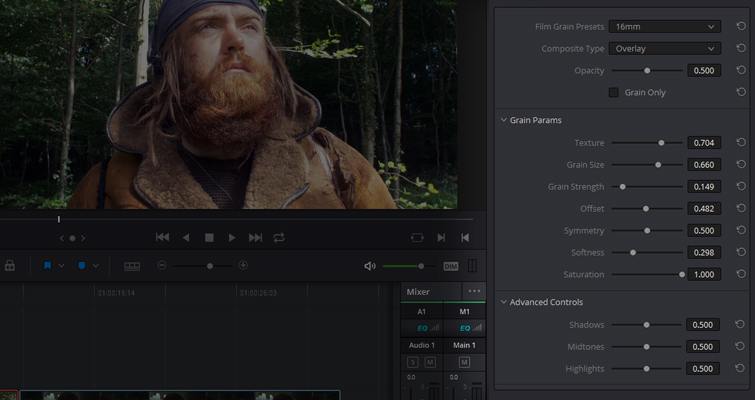 Master Resolve's Built-In Film Grain with This Rundown — Menu Controls