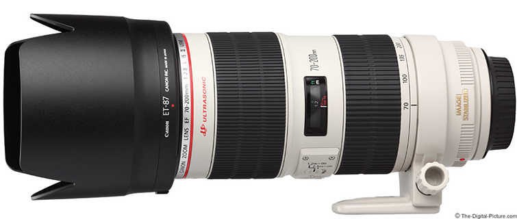 The Ultimate Guide to Becoming a Shreditor: Shooting — 70-120mm f/2.8