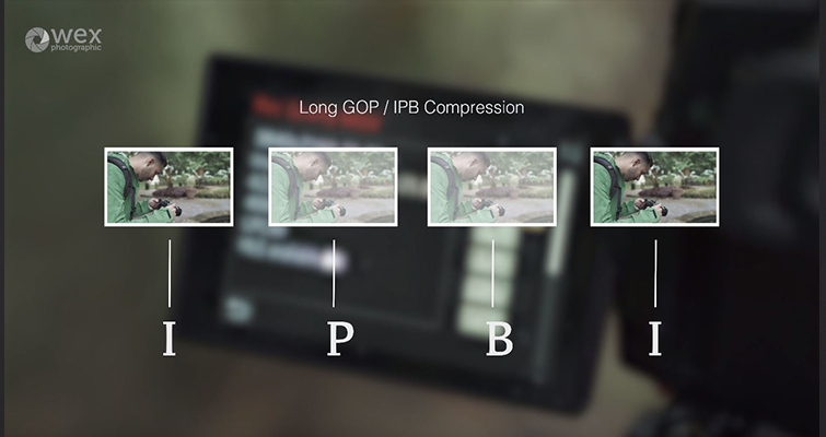 GH5's Latest Update: Long GOP vs. ALL-Intra Compression — Compression