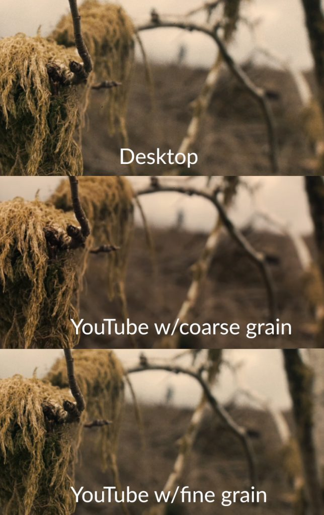 How Heavy Grain Overlays Are Affecting Your YouTube Upload — Fine Grain
