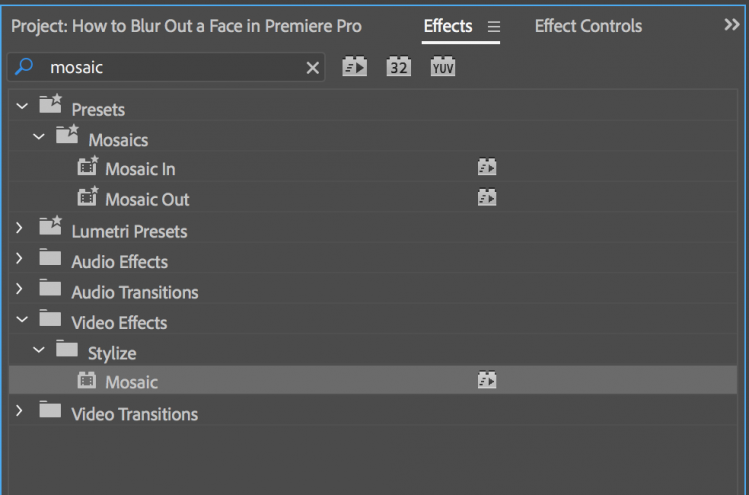 Need to Blur a Face in Premiere Pro? Here's How You Do It — Mosaic Effect