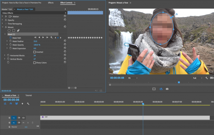Need to Blur a Face in Premiere Pro? Here's How You Do It — Track Mask
