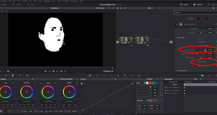Working with DaVinci Resolve 14's Powerful Face Refinement Plug-in — Show Mask