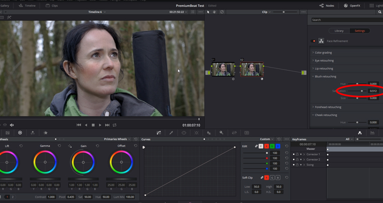Working with DaVinci Resolve 14's Powerful Face Refinement Plug-in — Blush Retouching