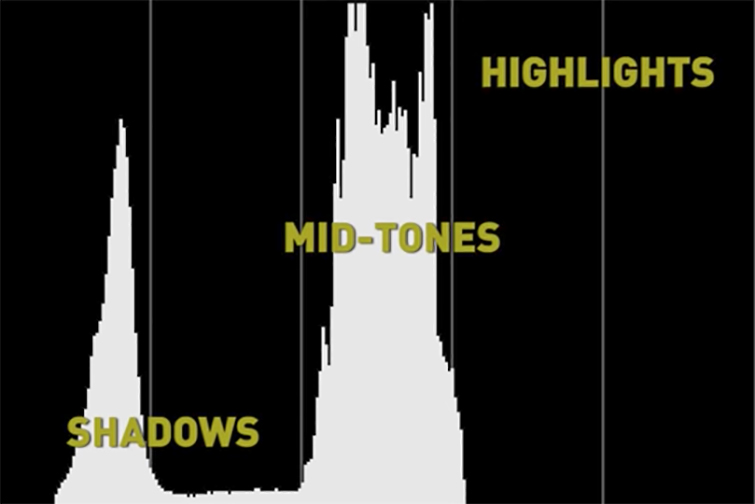 The Wonderful World of Histograms (And What They Mean) — Black and White Histogram