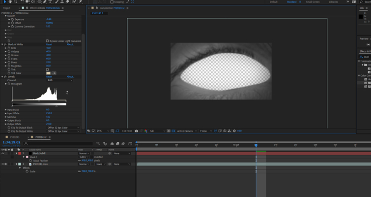 How To Create a Blinking Eye Transition in After Effects — Increase Scale