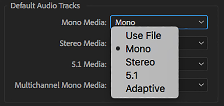 Premiere Pro Tips: 3 Options for Separating Boom and Lav Audio Files — Import as Mono